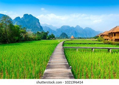 Wooden path and green rice field in Vang Vieng, Laos.