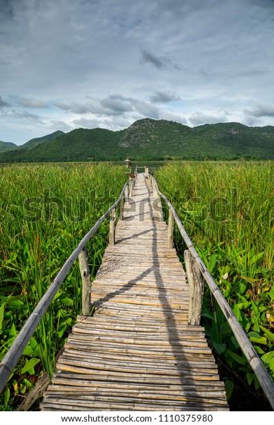 Wooden path with mountain and blue sky