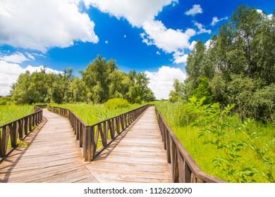 Wooden path in nature park Kopacki rit in Slavonia, Croatia, popular tourist destination and birds reservation