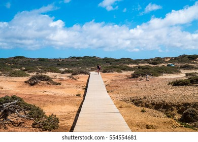 A wooden path on a beach in Portugal creating a symmetry