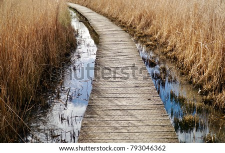 Wooden path over the lake cutting through tall grass
