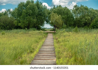 Wooden path over medow of Biebrza Natural park