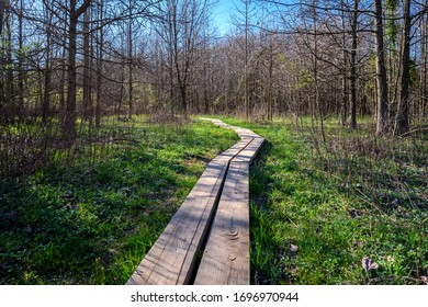 Wooden path over a swampy area of Davidson Mill Pond Park in South Brunswick, New Jersey.