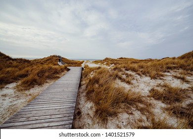Wooden path with stairs or boardwalk leading through dunes landscape on Amrum, North Frisian Islands, Schleswig-Holstein, Germany on a cloudy day