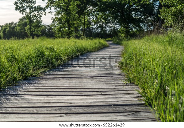 Wooden Pathway Build Old Wooden Planks Stock Photo Edit Now 652261429