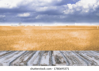 wooden pattern floor or table top with the jasmin rice in the field landscape