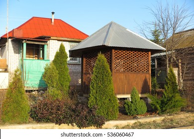 Wooden pavilion surrounded by American arborvitaes (Thuja occidentalis 'Smaragd') in the early spring garden against a blue sky
