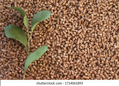 Wooden pellets background, pattern. Close up natural wood pellet with green leaves. Ecological heating, renewable energy Biofuels. Top view. Flat lay ecological fuel for solid fuel boilers.