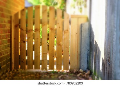 wooden picket type gate fence along a side wall of a house in a yard or garden. Sunshine is making the gate look golden in autumn sunshine. Tilts hift effect
