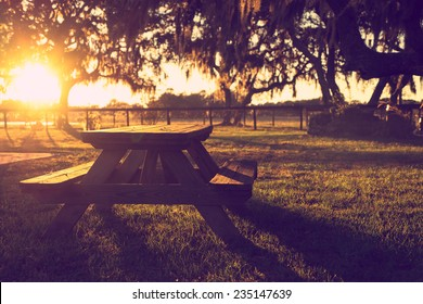 Wooden picnic table in field with trees at sunset sunrise golden hour looking peaceful serene meditative warm relaxing restful with a retro vintage cross processed filter