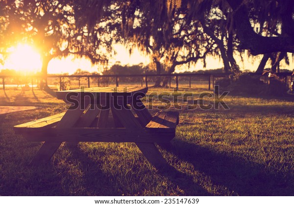 Wooden Picnic Table Field Trees Sunset Stock Photo (Edit Now