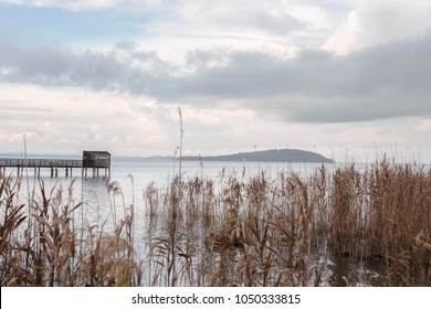 """Wooden Pier  with birdwatching hut in Trasimeno lake with reeds in the foreground ,in the naturalistic oasis of  """"La valle""""   San Savino, municipality of Magione,  Umbria, Italy."""