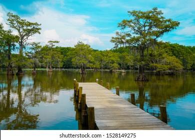 Wooden Pier at Caddo Lake near Uncertain, TX