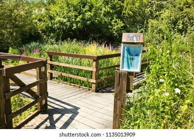 A wooden pier leading to lush marsh greenery of wildlife nature reserve in UK, Europe