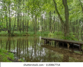 Wooden pier on the bank of Wda river in Poland. Bory Tucholskie