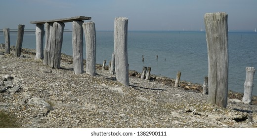 Wooden piles on the dike near the Oosterschelde in Zeeland, The Netherlands