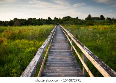 Wooden plank boardwalk over grassy wetland field leading into the distance