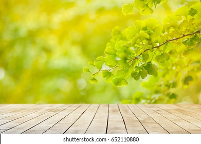 wooden plank with green ginkgo leaf background