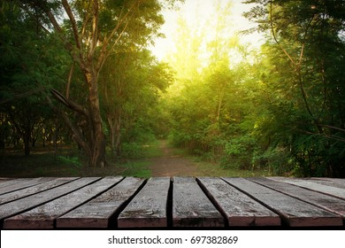 Wooden planks with forests with small pathway for background.