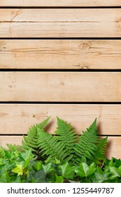 Wooden planks with green vegetation ideal for backgrounds and textures