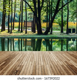 Wooden platform and forest