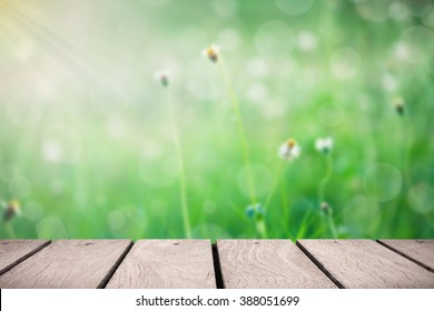 Wooden platform at garden for background