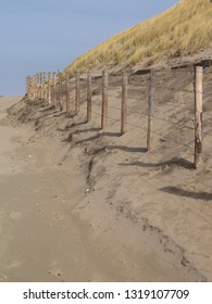wooden poles at the dunes of Katwijk