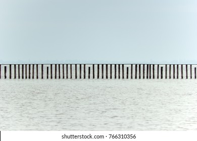 Wooden poles in the lake Neusiedl, Burgenland.