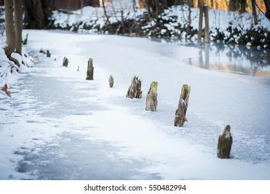 wooden poles outstanding of frozen river