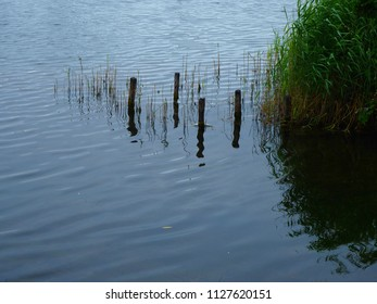 Wooden posts reflected in the water at the edge of a lake