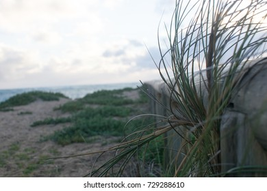 wooden railing with blurry background with grass