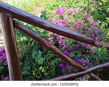 A wooden railing in a tropical garden.