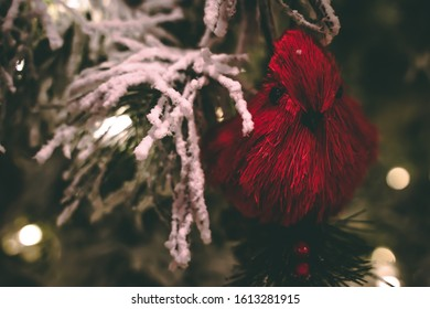Wooden red cardinal Christmas real tree ornament on snow covered branches surrounded by glowing white lights