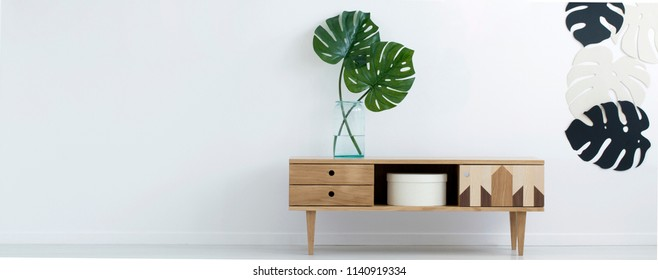 Wooden retro cupboard with two fresh Monstera Deliciosa leaves in glass vase in real photo of white room interior with empty space for your armchair