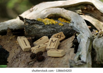 wooden runes lie on dry bark from a tree. Runic Futhark in natural elements. The concept of mysticism, magic and prediction of the future