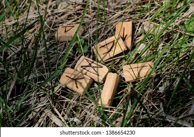 Wooden runes lie on dry grass, a new green grass sprouts nearby. Runic alphabet. Runic circle