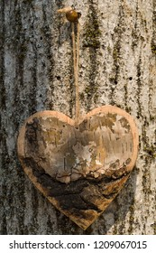 Wooden and rustic shape in wood  hang up, on the tree