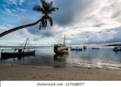Wooden sailboats on the water at the beach at sunrise in Mafia Island, Tanzania, with cloudy sky, calm water and a palm tree.
