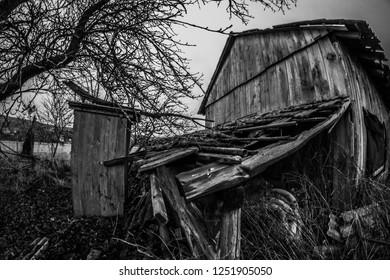 wooden shack hut field creepy mistical tree