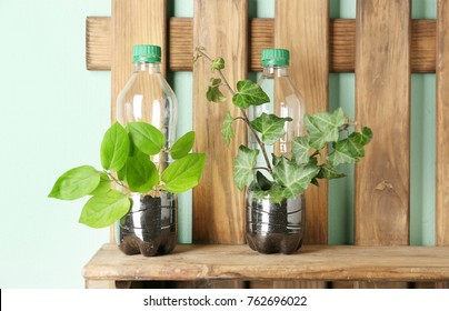 Wooden shelf with plastic bottles used as containers for growing plants