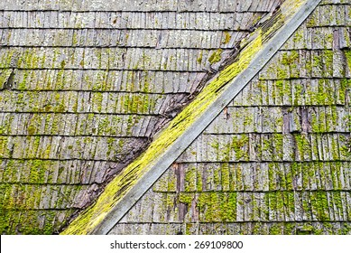 Wooden shingle roof with molds and algaes on the surface