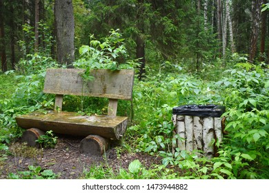 Wooden shop in the forest for rest. A handmade bench from logs. Beautiful forest landscape. A wastebasket in the park from a birch.