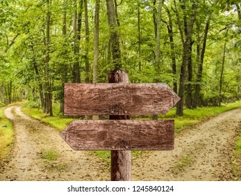Wooden sign board with path splitting into two direction in the background