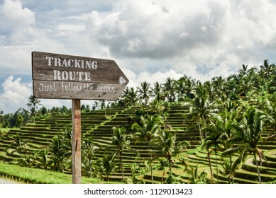 Wooden sign on green rice fields on Bali island, Jatiluwih near Ubud, Indonesia