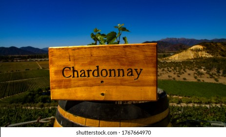 wooden sign on top of the barrel with written Chardonnay. mountain peak in Chile