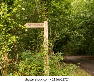 Wooden sign post pointing to Binsted Wood, Arundel: a tranquil and energising countryside walk through ancient woodland and pastures. To be destroyed by Option 5A - A27 Arundel bypass.