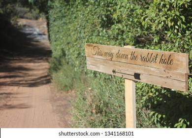 Wooden sign showing the way down the rabbit hole