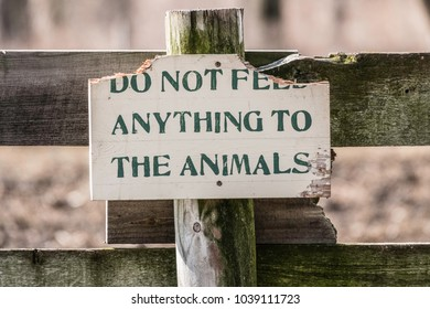Wooden sign, the top corners of which seem to have been chewed off, on a fence post of a horse paddock: Do Not Feed Anything to the Animals (shallow depth of field)