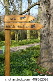Wooden signpost with the inscription monkeys and lions in a zoo