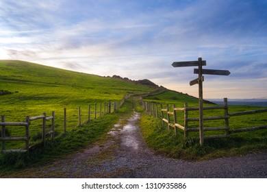 wooden signpost near a path